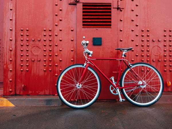 Mơ thấy xe đạp đánh con gì trúng lớn?