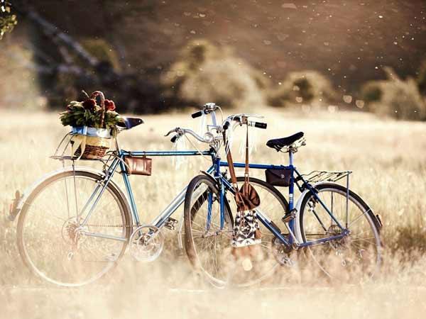 Mơ thấy xe đạp là điềm báo lành hay dữ?