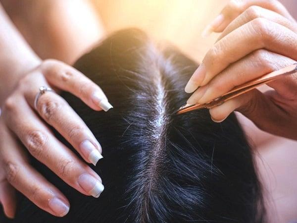 Mơ thấy nhổ tóc bạc tốt hay xấu?